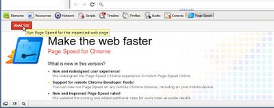 google-chrome-page-speed-plugin